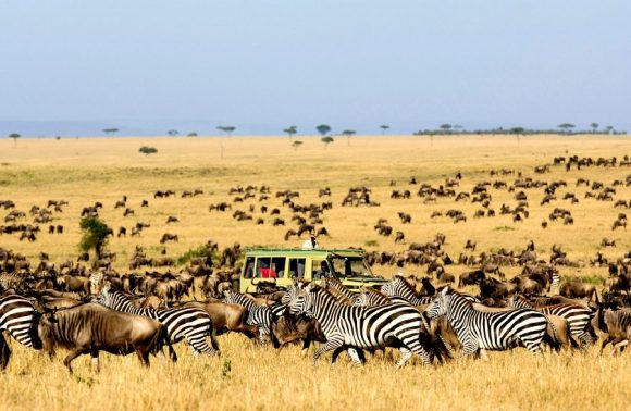 7 Days Lake Manyara, Ngorongoro, Serengeti & Tarangire Safari