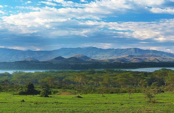 5 Day Lake Nakuru, Masai Mara & Lake Naivasha Safari
