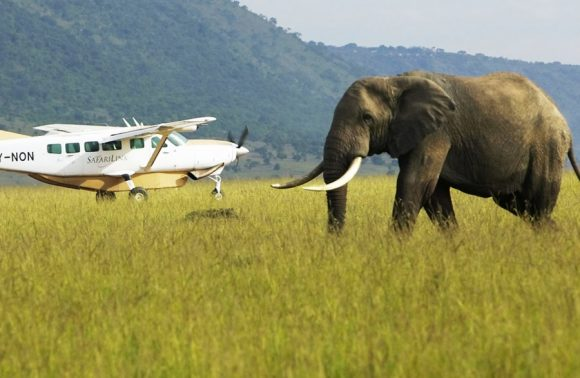 3 Days Amboseli Flying Safari