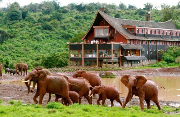 4 Days Mt. Kenya Honeymoon Package