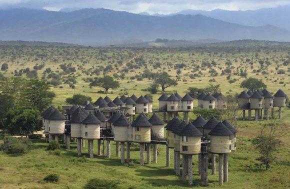 7 Days Taita Hills & Mombasa Honeymooners Package
