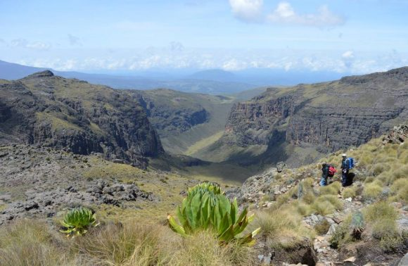 5 Days Mt Kenya Climbing | Sirimon-Chogoria Route