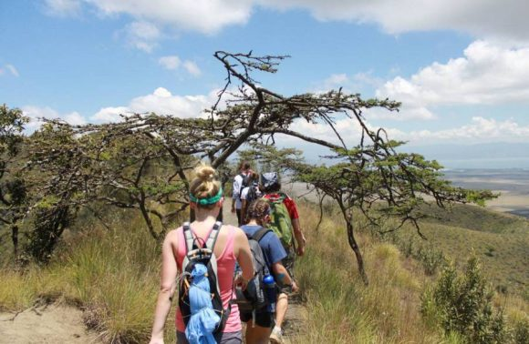 Table Mountain Hiking Day Trip