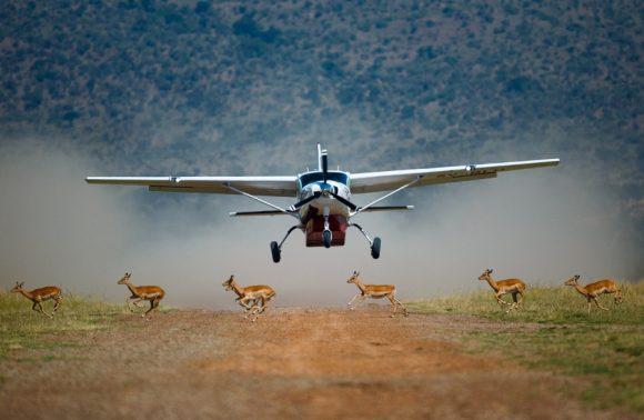 7 Days Amboseli, Samburu & Masai Mara Flying Safari
